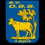 Logo OSS '20